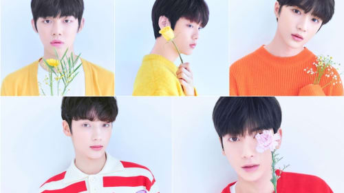 Guide to TXT (New BTS Junior Group)