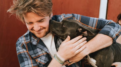 Your Pet Might Have Introduced You to Some Surprising Lifestyles