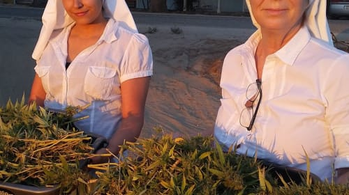 New Age, Activist Nuns Are Growing Cannabis