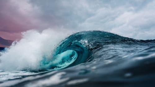 Who Led the Blue Wave?