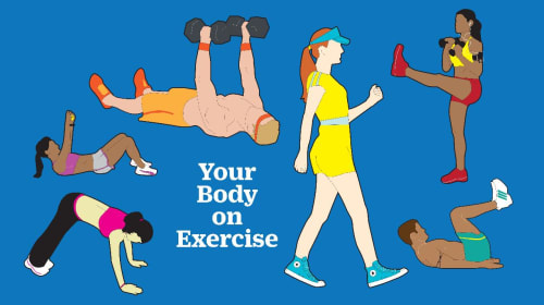 Exercise Challenge (Pt. 12)