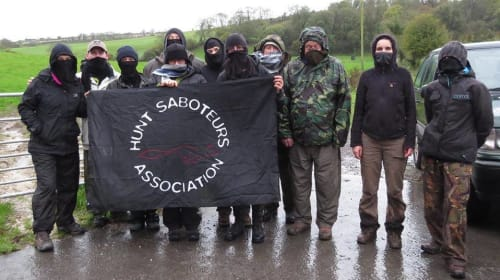 Hunt Saboteurs—the Masked Terrorists of the Countryside
