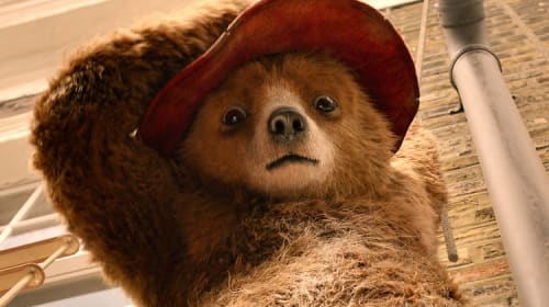 Get your paws stuck in this new Paddington Movie!