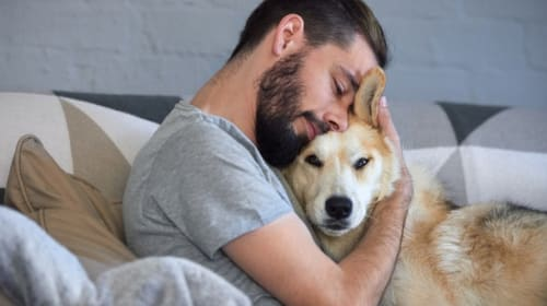 Pets and Depression