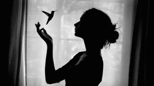 Like a Wispy Hummingbird