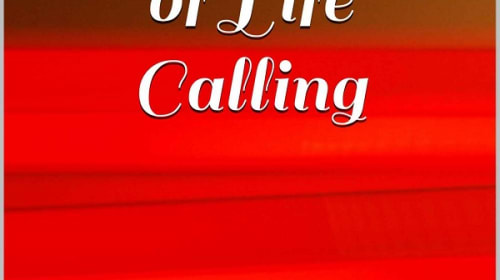 Discernment of Life Calling — Excerpt 6