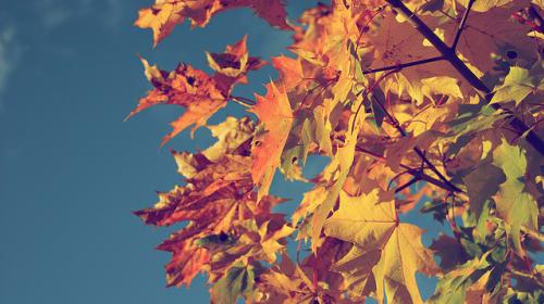 October's Brilliance