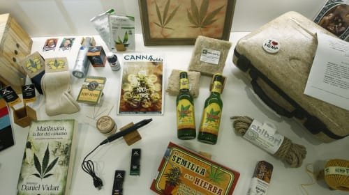 5 Cannabis Museums You Must Visit if You Love Weed
