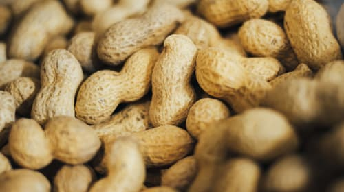 Relax Gringo, Have a Peanut