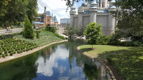 Disney World Experiences You Need to Have