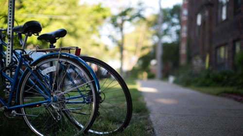Five Effortless Ways You Can Go Green on Campus