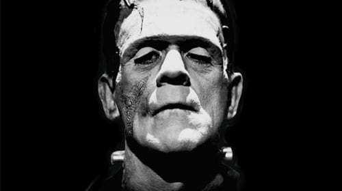 The Ambiguous Mary Shelley: Friend or Foe