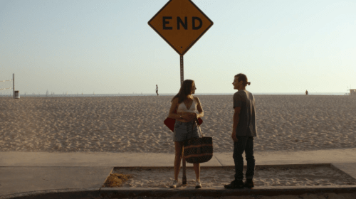 'We the Coyotes' Review