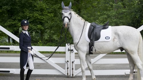 Horse Riding Tips That Will Help You Up Your Game