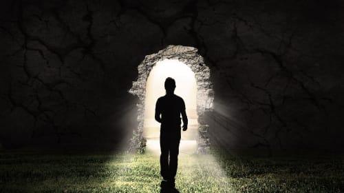 Transcending Life