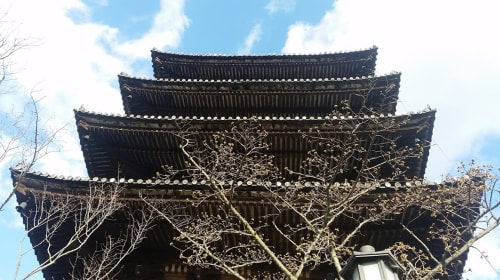20 Pieces of Advice and General Information You Should Know Before Traveling to Japan