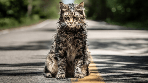'Pet Sematary' Trailer #2 Review: Sometimes Dead Is Better