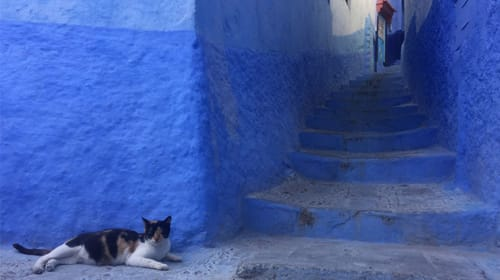 The Legend of the Blue City. Chefchaouen, Morocco.