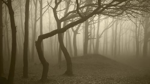 10 of the Most Haunted Hiking Trails in the World