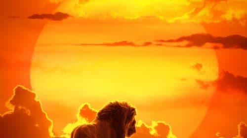 'Lion King' 2019 Remake