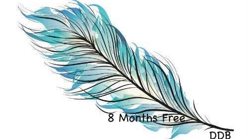 8 Months Free