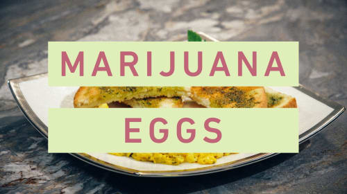 How To Make Cannabis Green Eggs