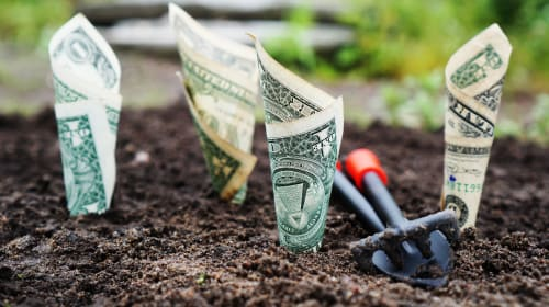 Easy Ways to Save Money and the Environment