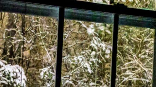 Cultivating Joy on Adult Snow Days