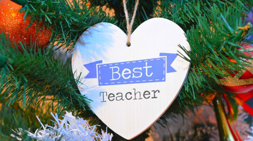 The Best Teacher for the Student