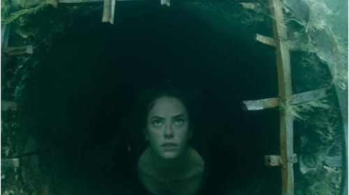 'Crawl' Movie Review