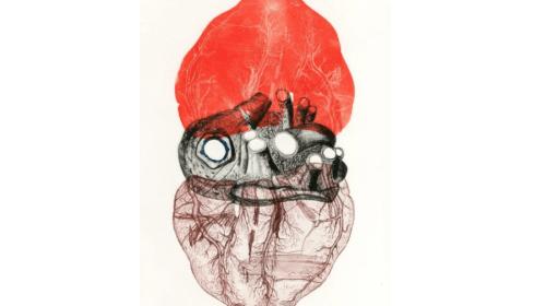 Migraines & the Ableist