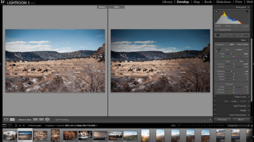 Editing Tips for Beginner Photographers