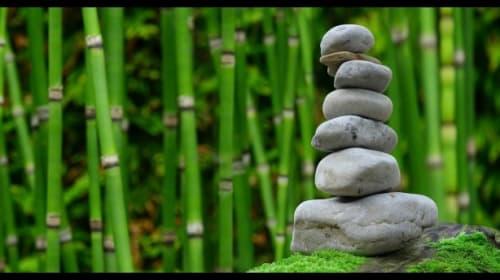 Stillness and Grounding