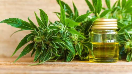11 Remarkable Health Benefits of Cannabis Oil Extracts