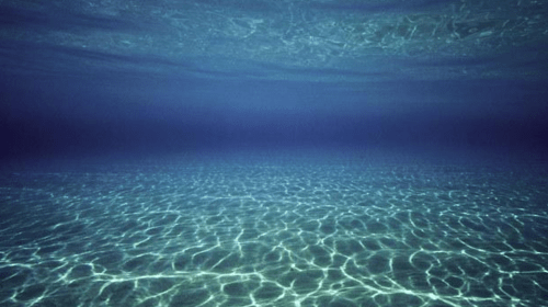 What Is Resting on the Sea Bed?