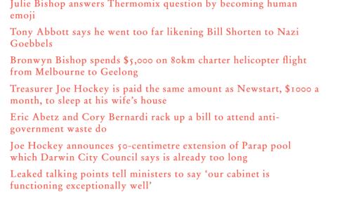 Aussies and Politics