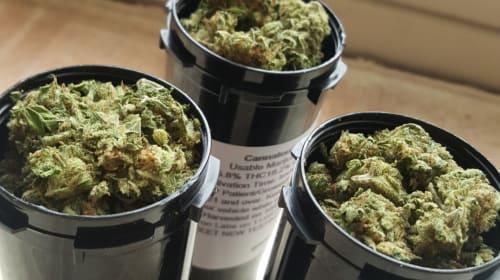 The Ultra-Basics of Using Marijuana as Medicine