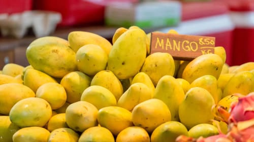 11 Curious Things You Ought to Know About Mangoes