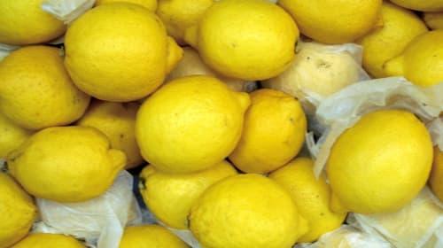 Life Is the Lemon