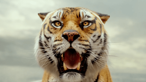 CG-Eye of the Tiger: Ranking the 5 Greatest SFX Tigers in Movies and TV