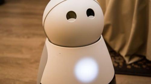 The Origin of Kuri the Helpful Robot