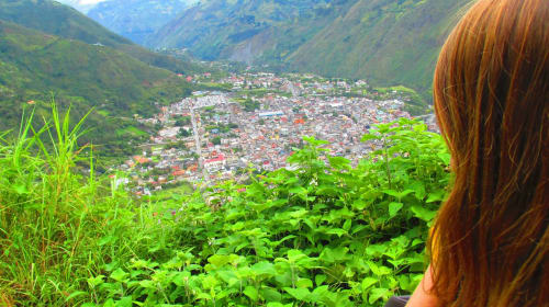 Oranges in the Ecuadorian Highlands