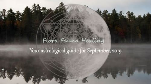 Astrological Forecast for September