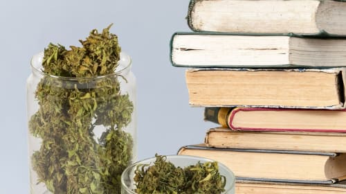 Books About Cannabis Legalization