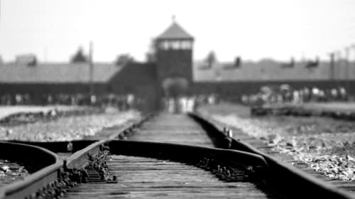 The Holocaust: A Conflicting Genocide