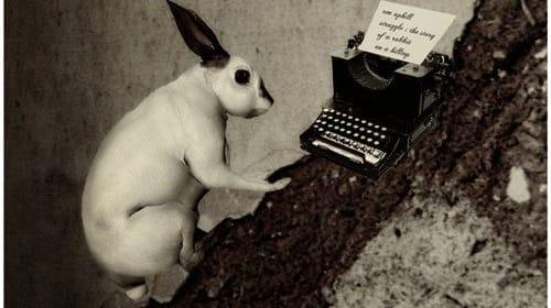 The Good Writer