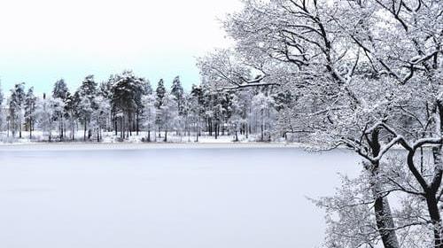 A Wonderful White World