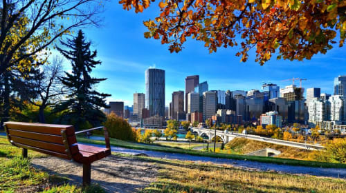 5 Must-Have Activities in Calgary