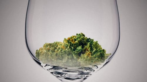 Defining Budtenders and Sommeliers