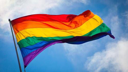 Half Support in the LGBTQ+ Community
